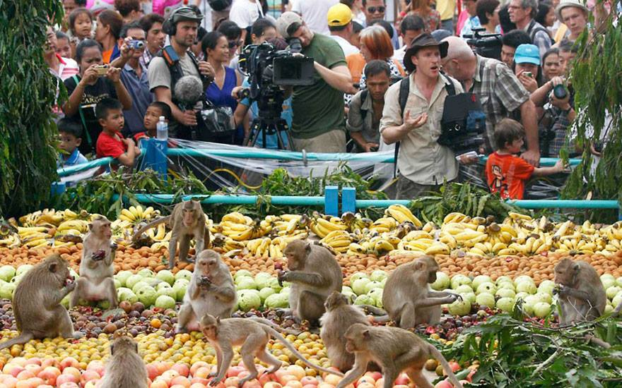 Lopburi Monkey Banquet 7