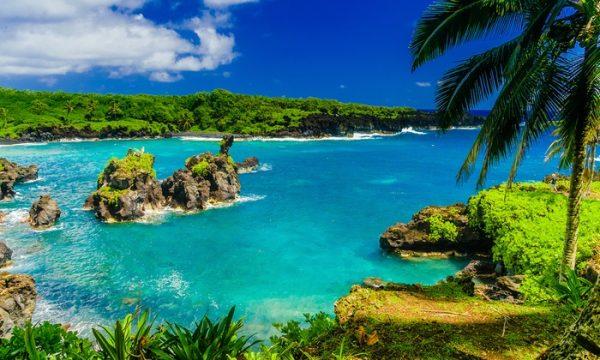 Blue Hawaii Tours Island Tour Oahu