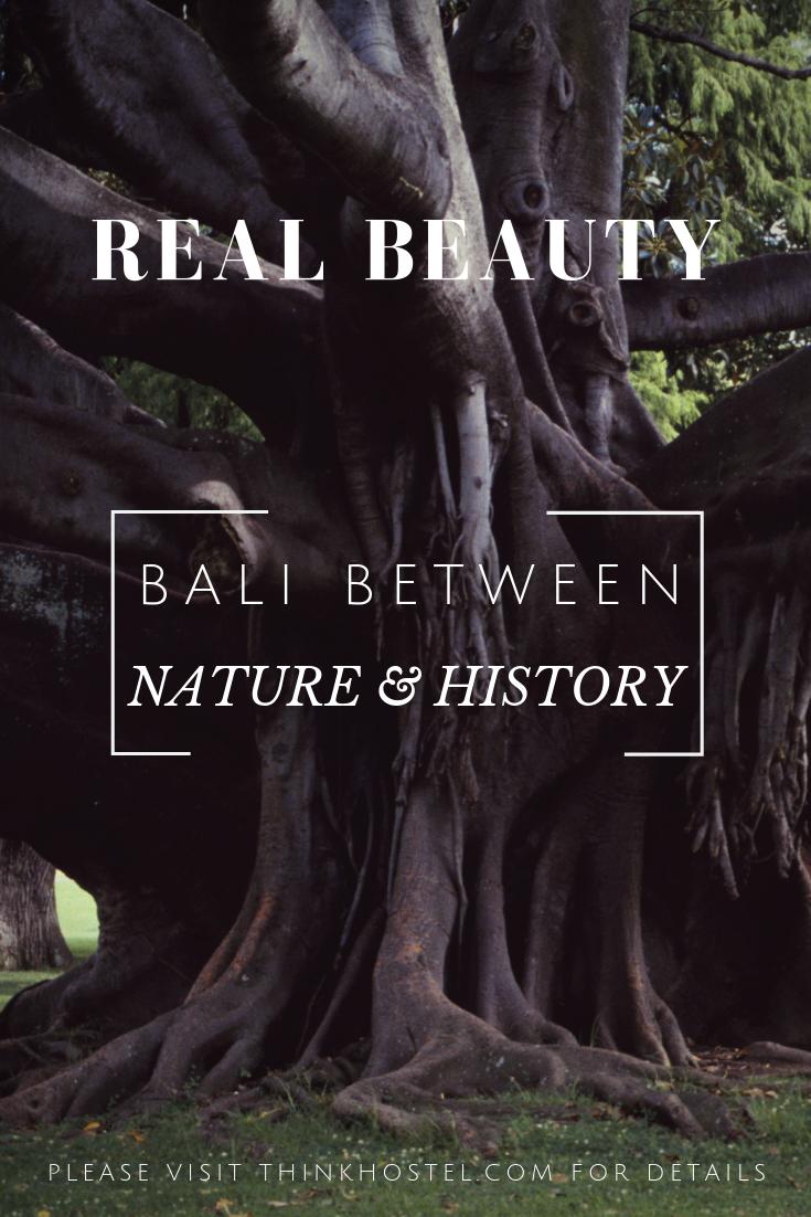 bali between nature & history